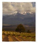 Lone Tree And Lavender Fields Fleece Blanket
