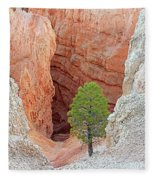 Lone Tree At Bryce National Park Fleece Blanket