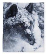 Lone Wolf In Snow Fleece Blanket
