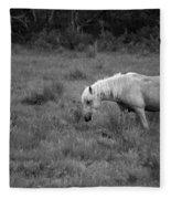 Lonesome Pony Fleece Blanket