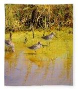 Long Billed Dowitchers Migrating Fleece Blanket