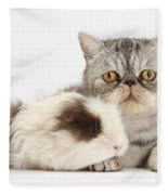 Long-haired Guinea Pig And Silver Tabby Fleece Blanket