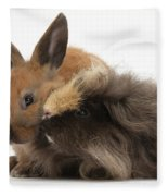 Long-haired Guinea Pig And Young Rabbit Fleece Blanket