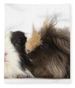 Long-haired Guinea Pigs Fleece Blanket