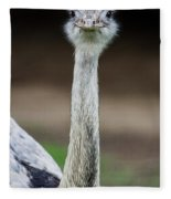 Looking At You Fleece Blanket