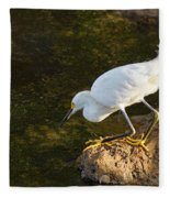 Looking For Dinner Fleece Blanket