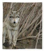 Looking Wild Fleece Blanket