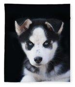 Lop Eared Siberian Husky Puppy Fleece Blanket