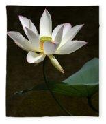 Lotus Beauty Fleece Blanket