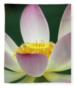 Lotus Diva Fleece Blanket