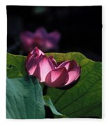 Lotus--echoes Of Light 24h Fleece Blanket