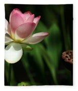 Lotus Opening To The Sun Fleece Blanket