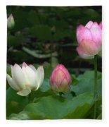 Lotus--stages Of Life II Dl024 Fleece Blanket
