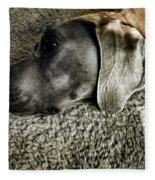 Lounging Fleece Blanket