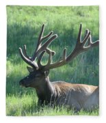 Lounging Elk Fleece Blanket