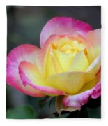 Love And Peace Fleece Blanket