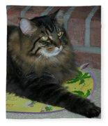 Lucky The Cat Fleece Blanket