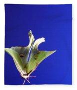 Luna Moth In Flight Fleece Blanket