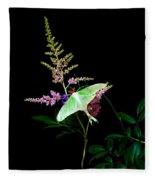 Luna Moth On Astilby Flower Fleece Blanket