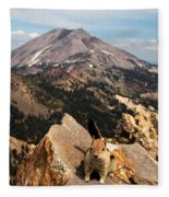 Lunch Break Fleece Blanket
