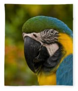 Macaw Parrot Stare Down Fleece Blanket