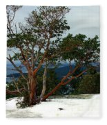Madrone On Young Hill Fleece Blanket