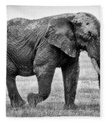 Majestic African Elephant Fleece Blanket