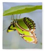 Malachite Butterfly On Leaf Fleece Blanket