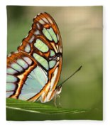 Malachite Butterfly Fleece Blanket