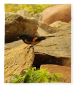 Male American Redstart On The Rocks Fleece Blanket