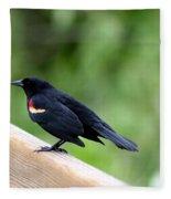 Male Red-winged Blackbird Fleece Blanket