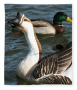 Mallard And Chinese Swan Goose - Anser Cygnoides - Featured In Wildlife Group Fleece Blanket