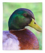 Mallard Drake In Shade Fleece Blanket