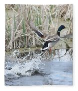 Mallard Duck Flying Fleece Blanket