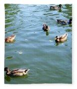 Mallard Ducks Fleece Blanket