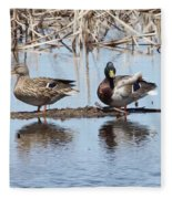 Mallard Ducks Sitting On A Sandbar  Fleece Blanket