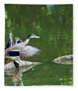 Mallards Taking Off Fleece Blanket
