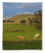 Mallerstang Dale In Cumbria Uk Fleece Blanket