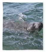 Manatee At Ponce Inlet Fleece Blanket