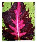 Many Leaves Of Coleus Fleece Blanket
