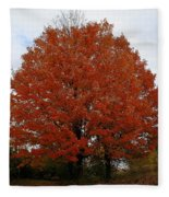 Maples In The Meadow Fleece Blanket