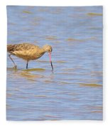 Marbled Godwit Searching For Food Fleece Blanket