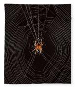 Marbled Orb Weaver Spider Fleece Blanket