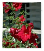 Martha's Vineyard Red Hibiscus And Porch Fleece Blanket