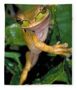 Masked Treefrog Fleece Blanket
