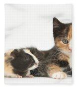Matching Kitten & Guinea Pig Fleece Blanket