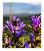 Meadow And Mountains Fleece Blanket