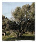 Mediterranean Wood Wiew Fleece Blanket