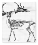 Megaloceros, Cenozoic Mammal Fleece Blanket