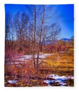 Melting Snow In South Platte Park Fleece Blanket